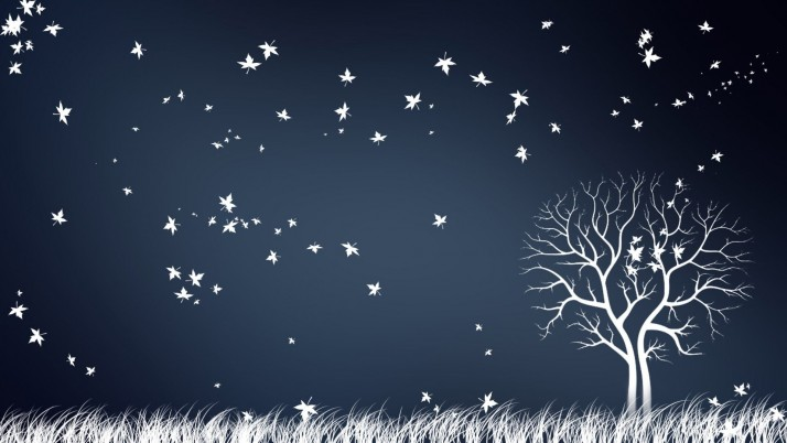 White Tree Leaves Grass Night wallpapers and stock photos