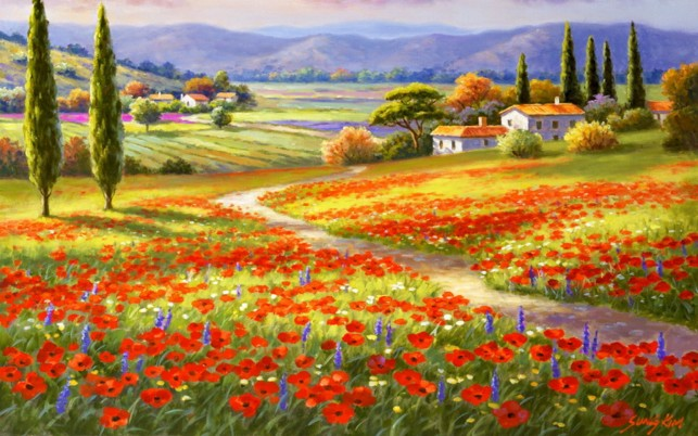 Delightful Poppy Fields Italy wallpapers and stock photos