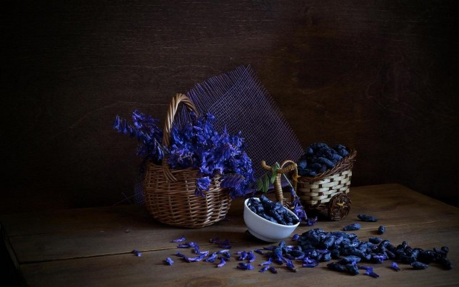 Blue Berries wallpapers and stock photos