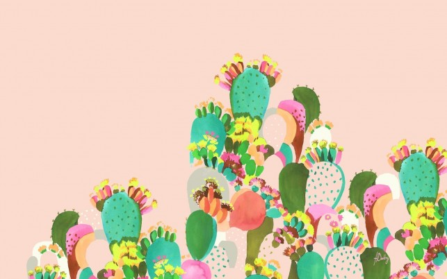 cactus Familie wallpapers and stock photos