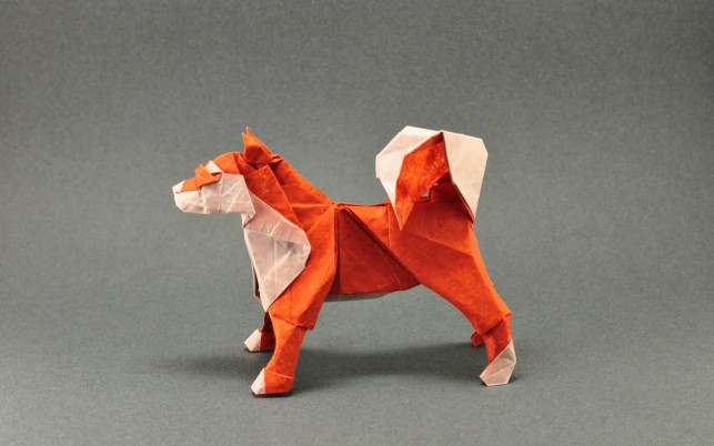 Origami Dog wallpapers and stock photos