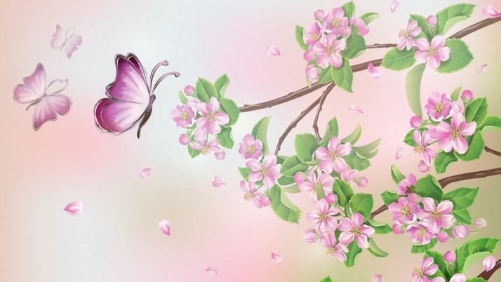 Plum Blossoms & Butterflies wallpapers and stock photos