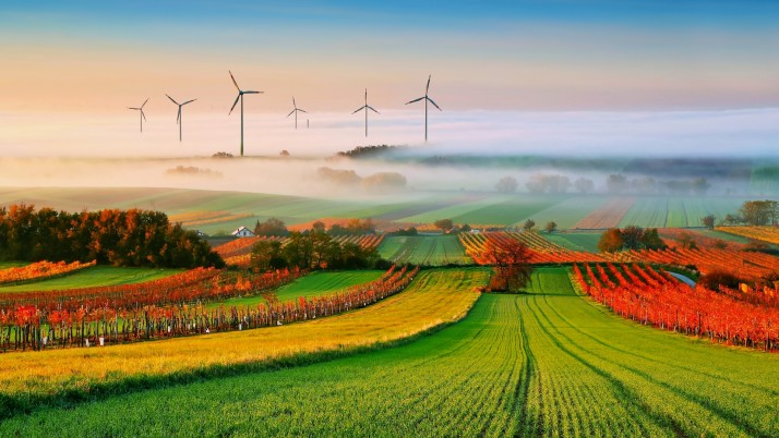 Calico Fields Windmills Foggy wallpapers and stock photos