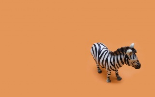 Zebra Toy wallpapers and stock photos