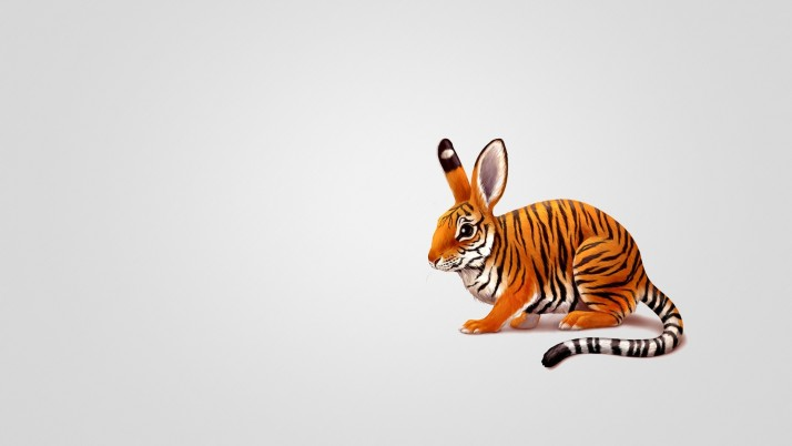 Tiger Bunny Funny wallpapers and stock photos