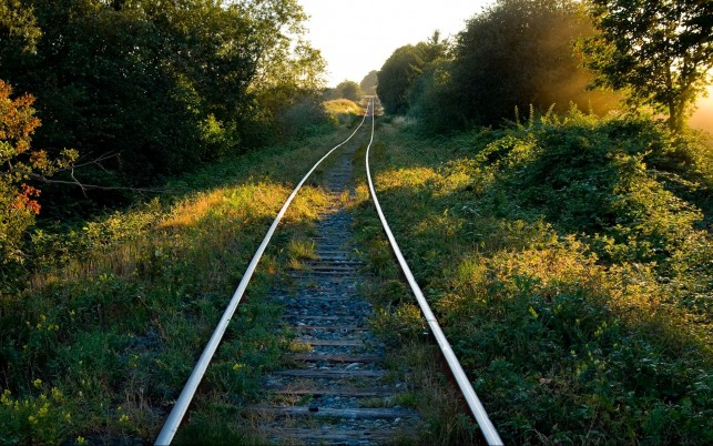 Gorgeous Rail Way Forest Sunny wallpapers and stock photos