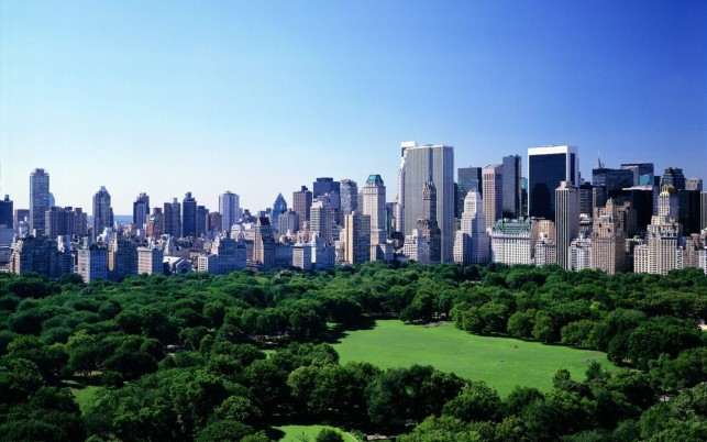 Charming Green Trees Manhattan wallpapers and stock photos