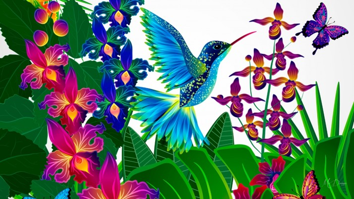 Blue Hummy Orchids Butterfly wallpapers and stock photos