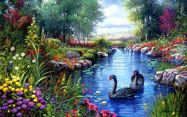 Vivid Flowers Pond Swans wallpapers and stock photos