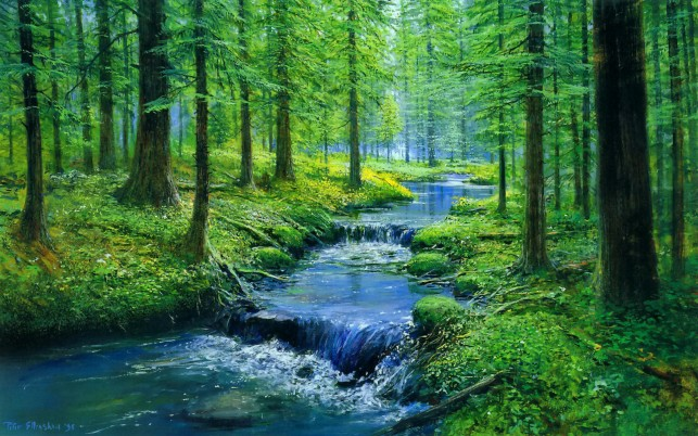 Forest Blue Creek Waterfalls wallpapers and stock photos