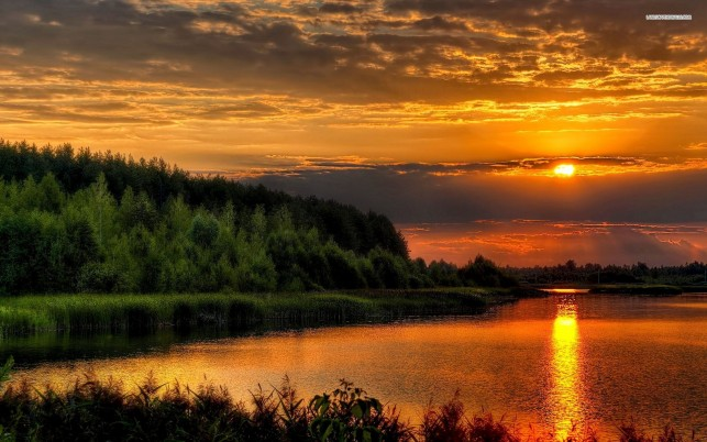 Orange Sunset Lake Nice Trees wallpapers and stock photos