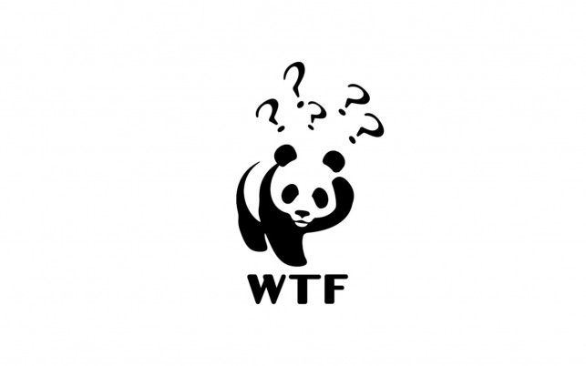 Confused Panda wallpapers and stock photos