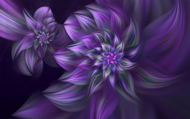 Purple Blooms wallpapers and stock photos