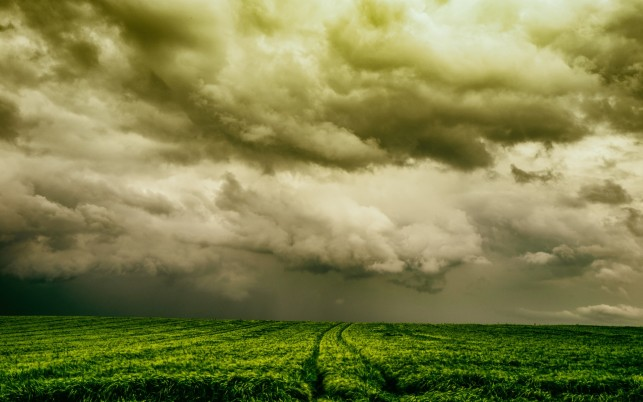 Stormy Clouds & Wheat Field wallpapers and stock photos