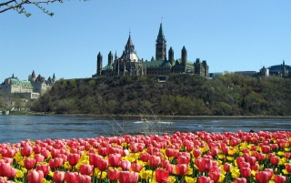 Parliament Hill wallpapers and stock photos