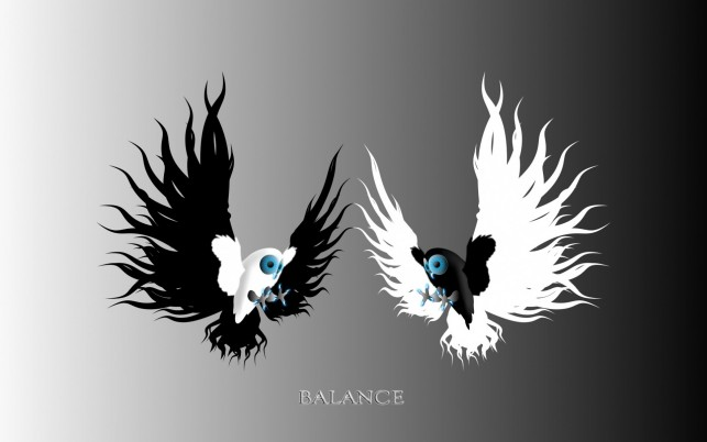 Yin & Yang Owls wallpapers and stock photos