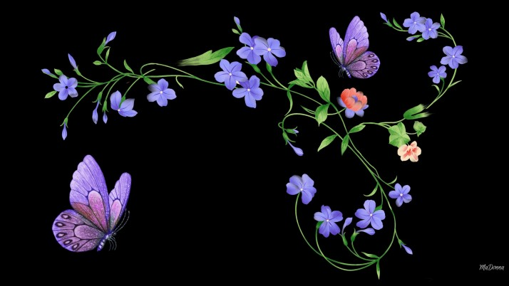 Purple Butterflys & Flowers wallpapers and stock photos