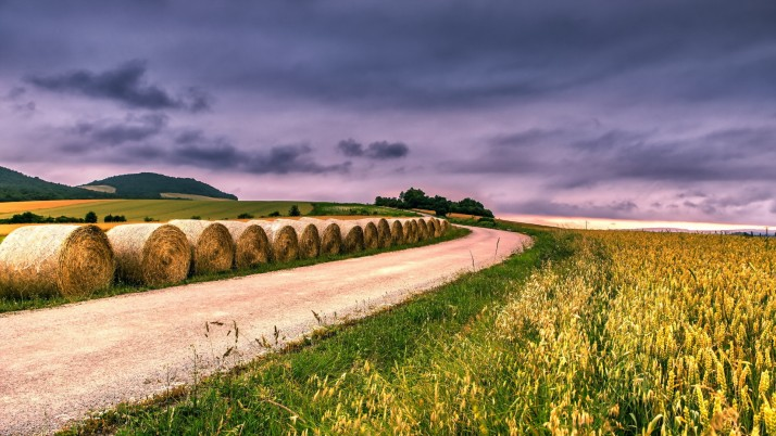 Wheat Field Road Hay Bales Sky wallpapers and stock photos