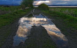 Sky Puddle wallpapers and stock photos