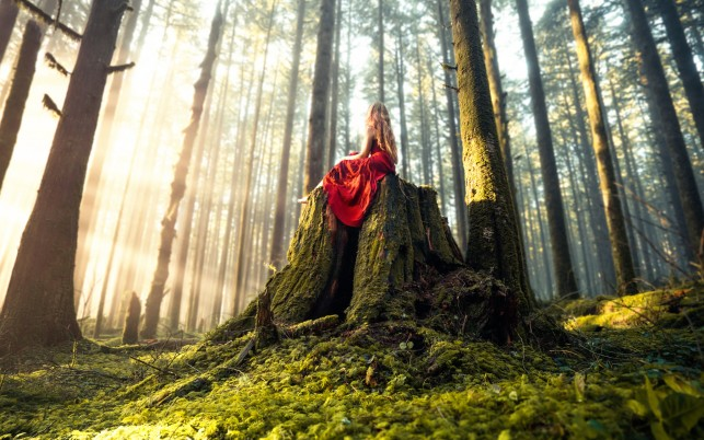 Forest Princess wallpapers and stock photos