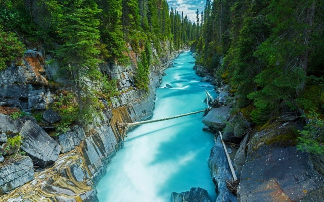 Forest Rocks Aqua River Canada wallpapers and stock photos