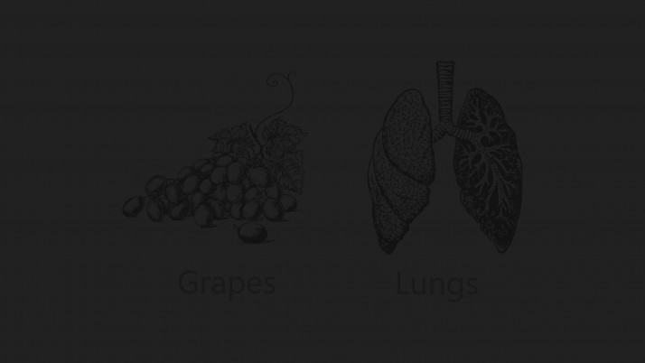 Grapes - Lungs wallpapers and stock photos