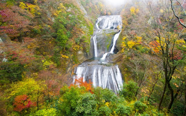 Next: Waterfall Cascade Vivid Autumn