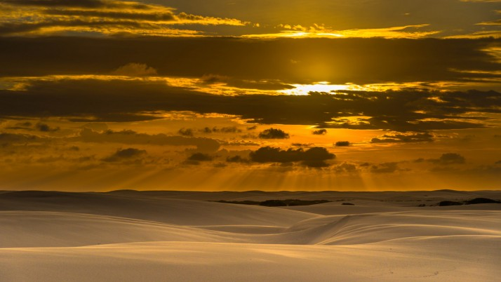 Random: Nice Desert & Golden Sunset