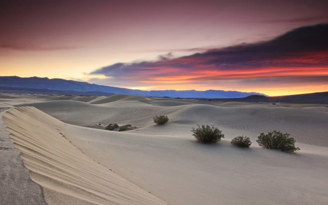 Gorgeous Desert & Pink Sunset wallpapers and stock photos