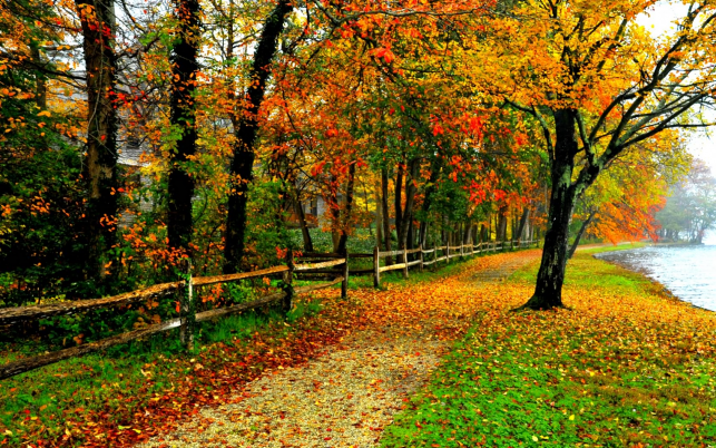 Haus Zaun Side Walk Herbst wallpapers and stock photos