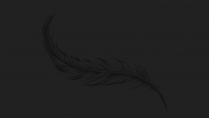 Feather wallpapers and stock photos