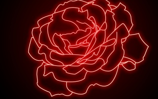Neon Rose wallpapers and stock photos