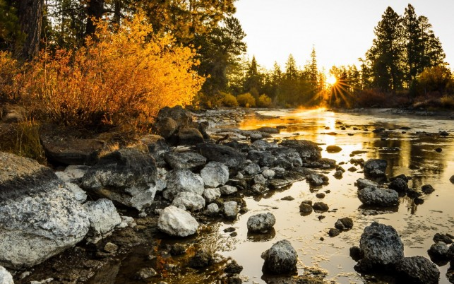 Lake Nice Rocks Trees Sunrise wallpapers and stock photos