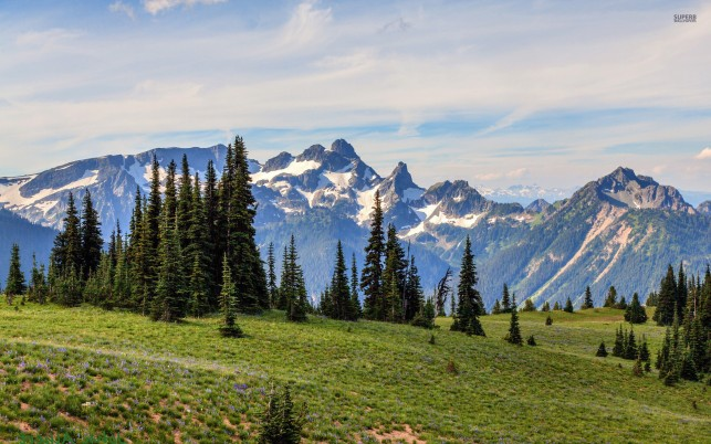 Delightful Mount Rainier Usa wallpapers and stock photos