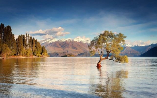 Beautiful Wanaka New Zealand wallpapers and stock photos