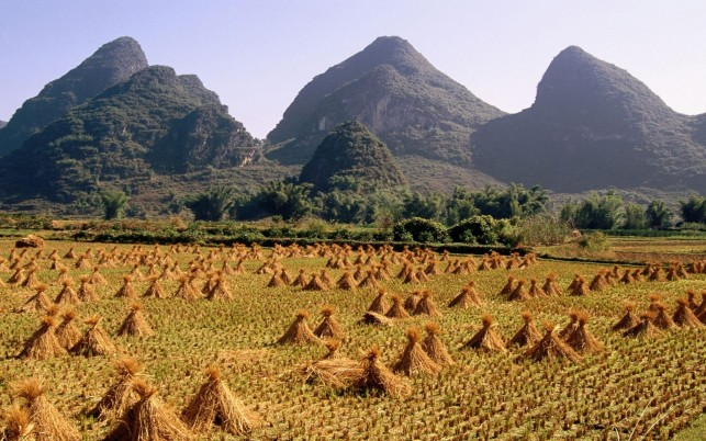 Green Peaks Hay Stacks Field wallpapers and stock photos