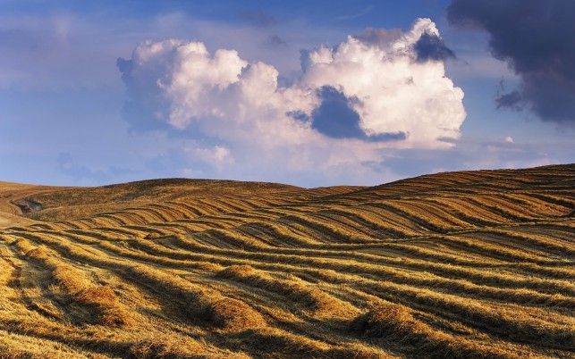 Charming Dried Up Hill Clouds wallpapers and stock photos