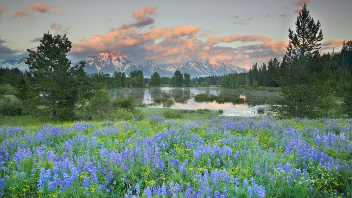 Grand Teton Spring Time wallpapers and stock photos