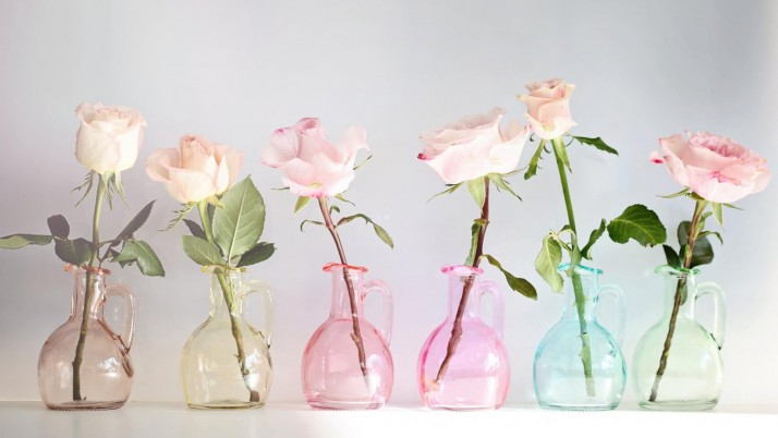 Six Pink Roses wallpapers and stock photos