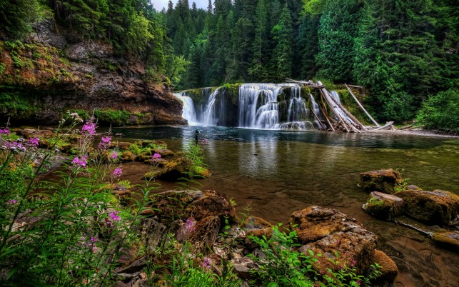 Lewis River Falls wallpapers and stock photos