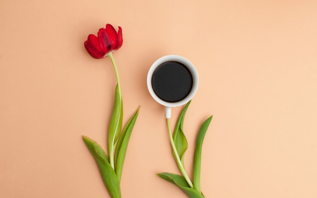 Creative Coffee Blossom wallpapers and stock photos