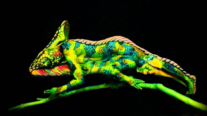 The Chameleon Body Painting wallpapers and stock photos