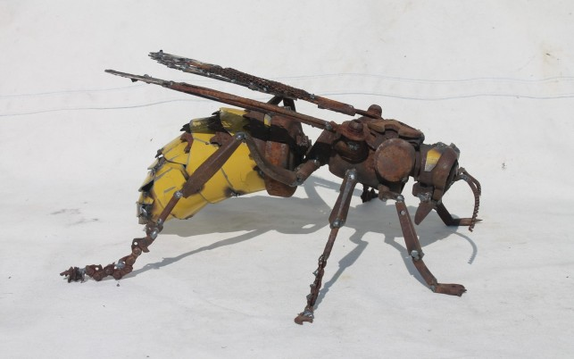 Scrap Metal Wasp wallpapers and stock photos