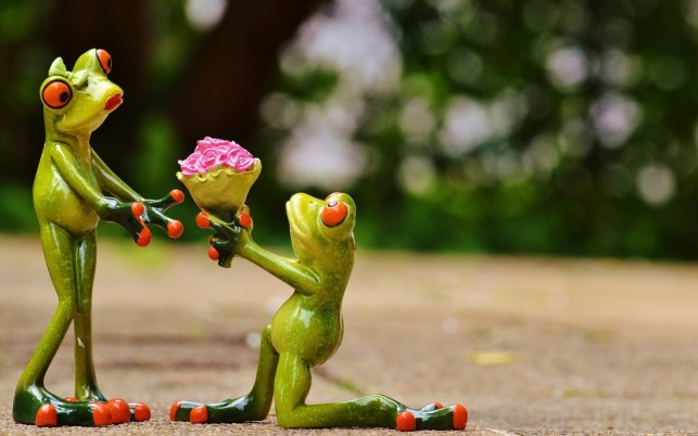 Frogs In Love wallpapers and stock photos