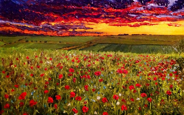 Poppy Meadow & Fiery Sunset wallpapers and stock photos