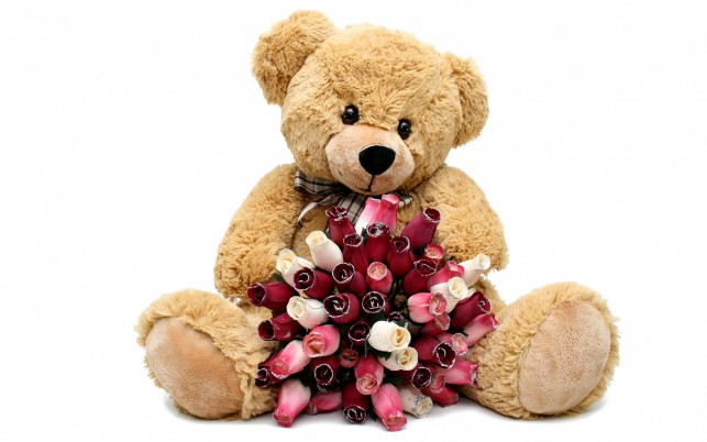 Cute Teddy & Bouquet Of Roses wallpapers and stock photos