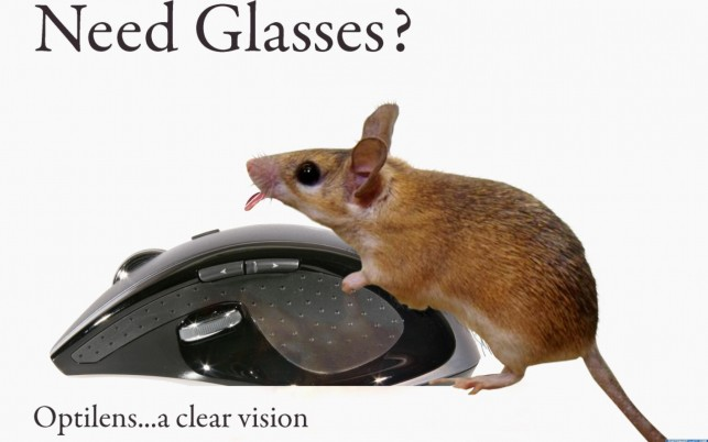Blind Mouse wallpapers and stock photos