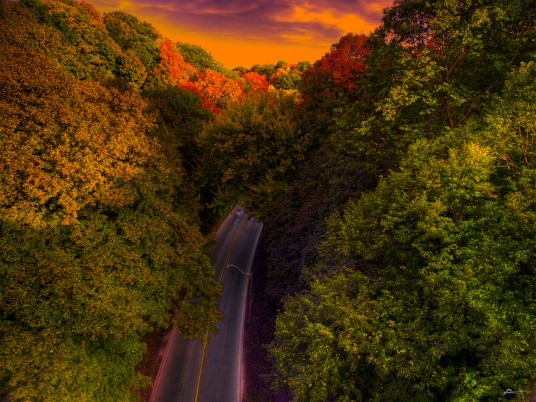 Autumn Trees Road Aerial View wallpapers and stock photos