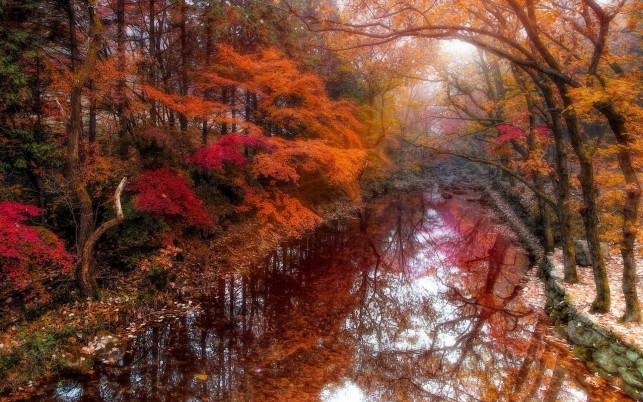 Autumn Reflection South Korea wallpapers and stock photos