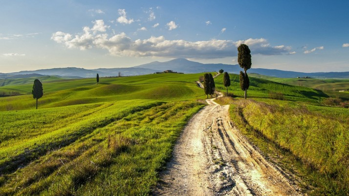 Fields Hills Path Trees Italy wallpapers and stock photos